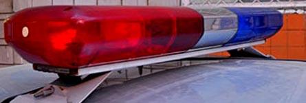 Убийство на дачном участке в Кургане