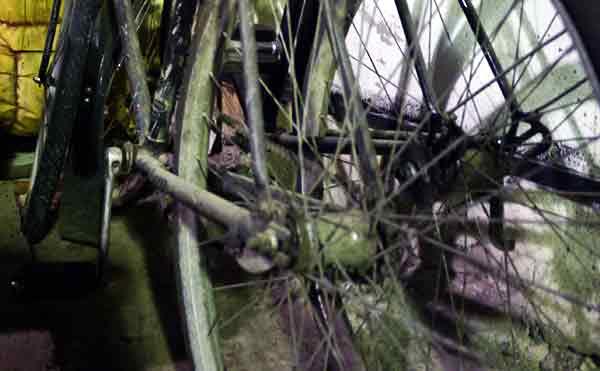 В Кургане рецидивист украл велосипед через дачное окно
