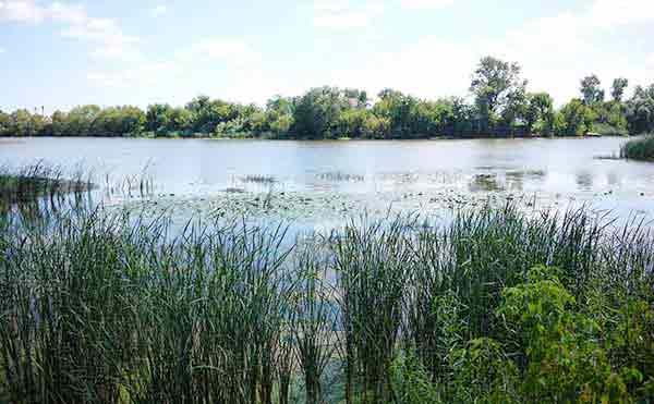 В Шадринске продолжают поиски девочки, утонувшей в реке Исеть