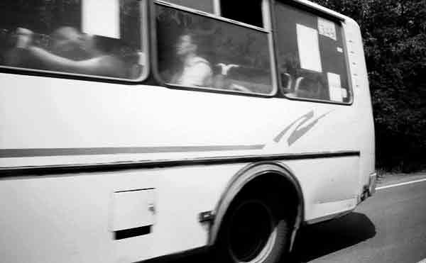 В Курганской области по вине водителей автобусов пострадали 33 человека