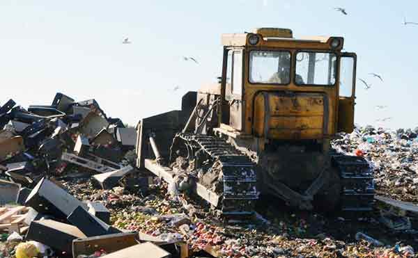 В Курганской области уничтожили 6 тонн фруктов неизвестного происхождения