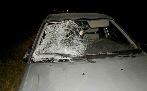 В Шадринском районе под колесами иномарки погиб мужчина