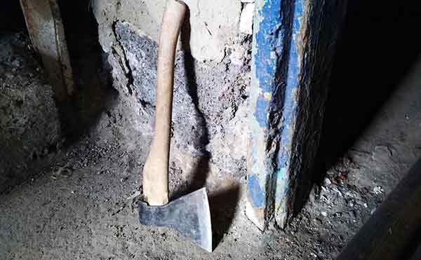 В Зауралье 19-летний юноша убил пенсионерку топором