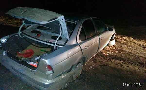 Нетрезвая автоледи из Кургана улетела в кювет в Куртамышском районе