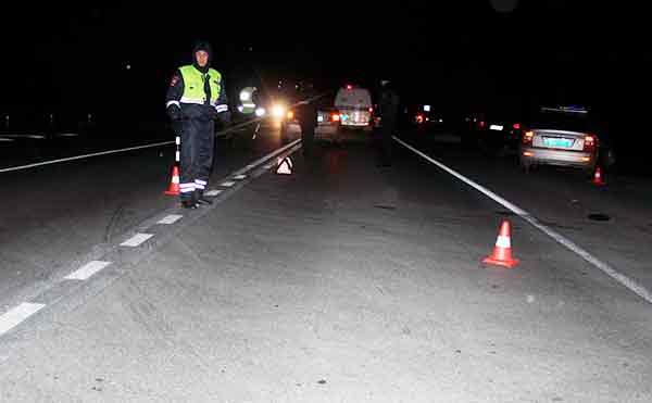 В Кургане на трассе в темноте сбили насмерть пешехода