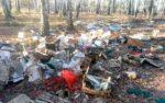 Заваленные мусором леса возле Кургана возмутили местных жителей
