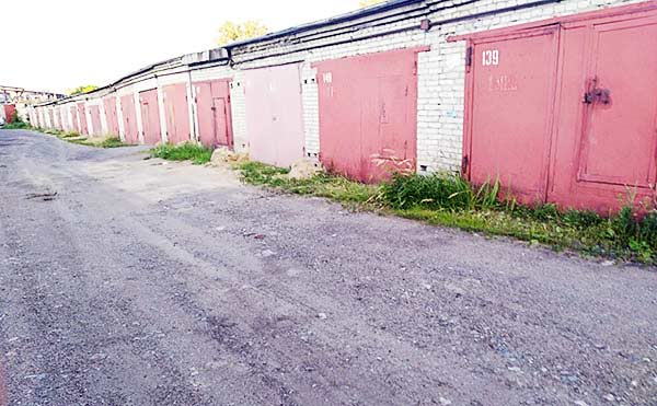 В Курганской области два местных жителя обокрали гараж женщины