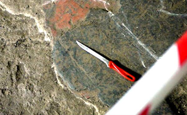 В Кургане девушка с ножом напала на игрока в тотализатор