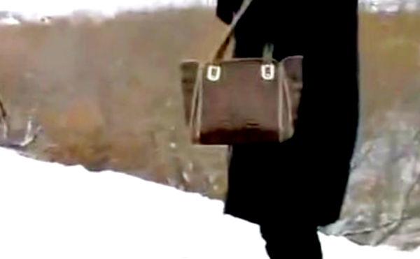 В Кургане грабитель выхватил сумку у женщины