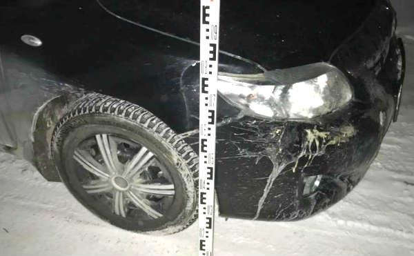В Кургане нетрезвый водитель сбил пенсионерку
