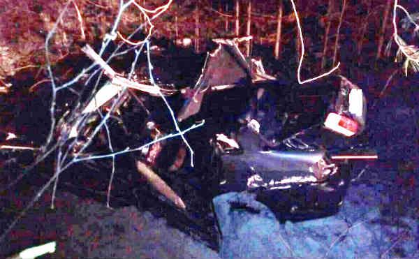 В Курганской области водитель иномарки погиб после столкновения с деревом