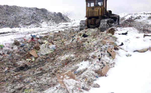 В Кургане почти тонну пекинской капусты раздавили бульдозером на мусорном полигоне