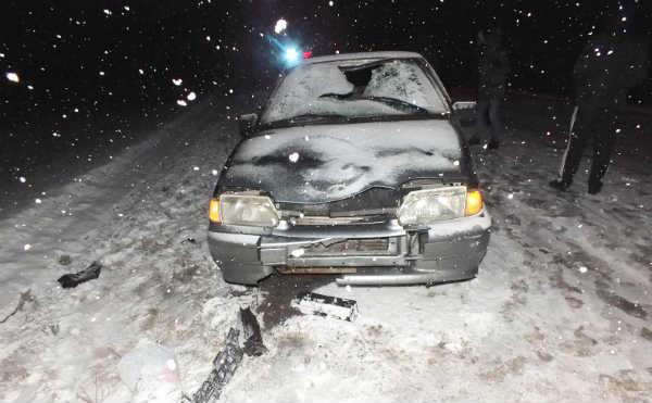 В Курганской области погиб пешеход, ловивший попутку
