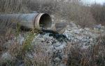 Мэрию Кургана обязали остановить загрязнения Битевки сточными водами