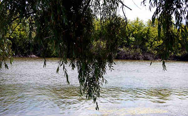 В Курганской области двое подростков утонули во время купания в водоемах