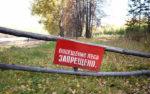 В Курганской области на два дня ввели запрет на посещение лесов