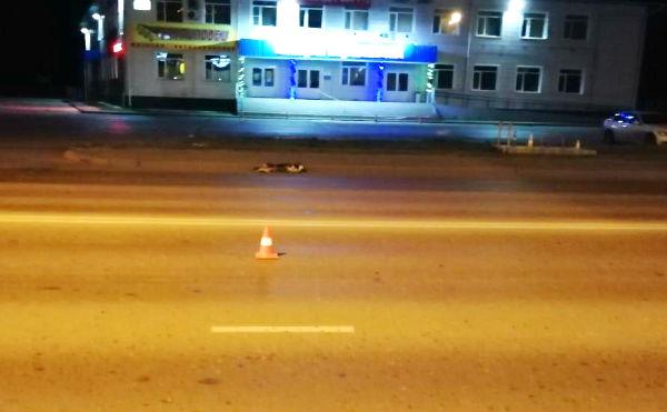 В Кургане мотоциклист сбил собаку и чуть не угробил пассажирку