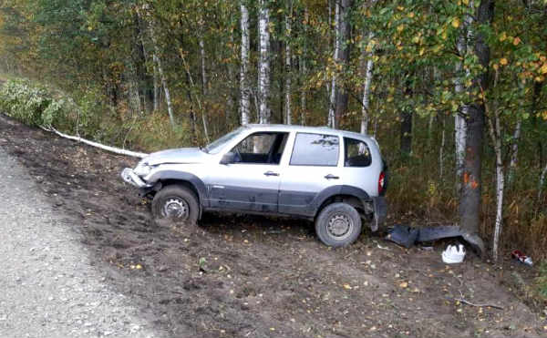 В Курганской области автомобиль опрокинулся на трассе и врезался в дерево