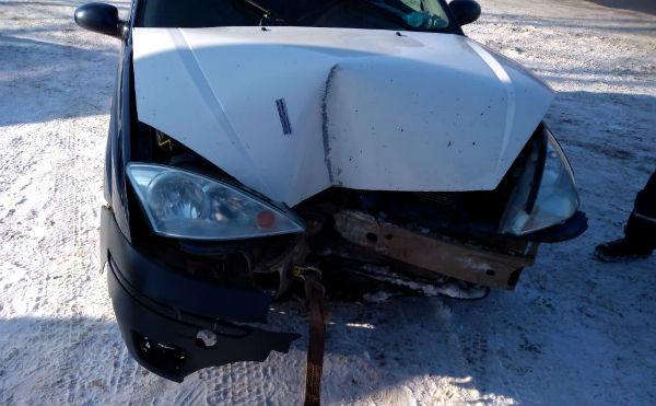 В Курганской области непристегнутая автоледи врезалась в столб. Постадал ребенок.