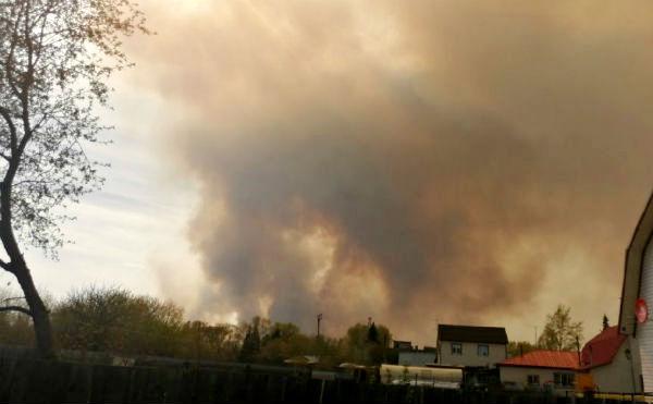 В Курганской области задержан подозреваемый в поджоге леса